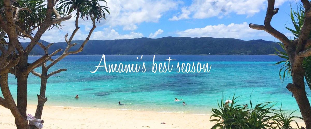 奄美大島のベストシーズンは?一度は行っておきたい!人気観光スポット情報