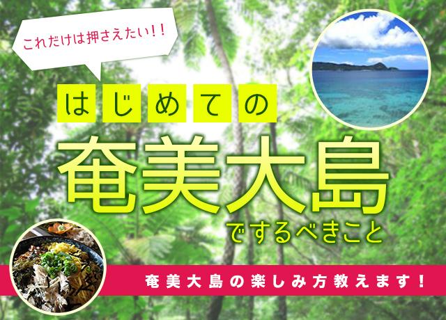 奄美大島の楽しみ方