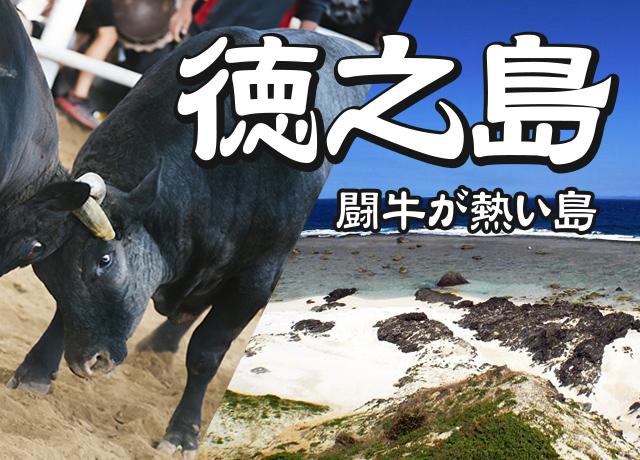 徳之島へ行こう