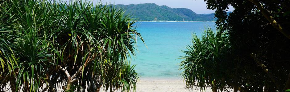 奄美大島へ行こう