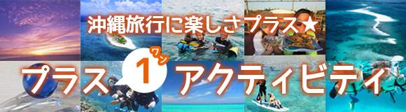 沖縄オプショナルツアー