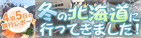 冬の北海道旅行レポート