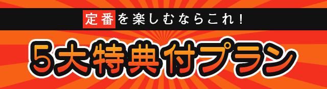 沖縄5大特典付きツアー