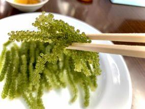 沖縄の名物「海ぶどう」ってなに?お土産にできるの?食べ方は?