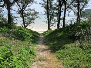 トウマの浜